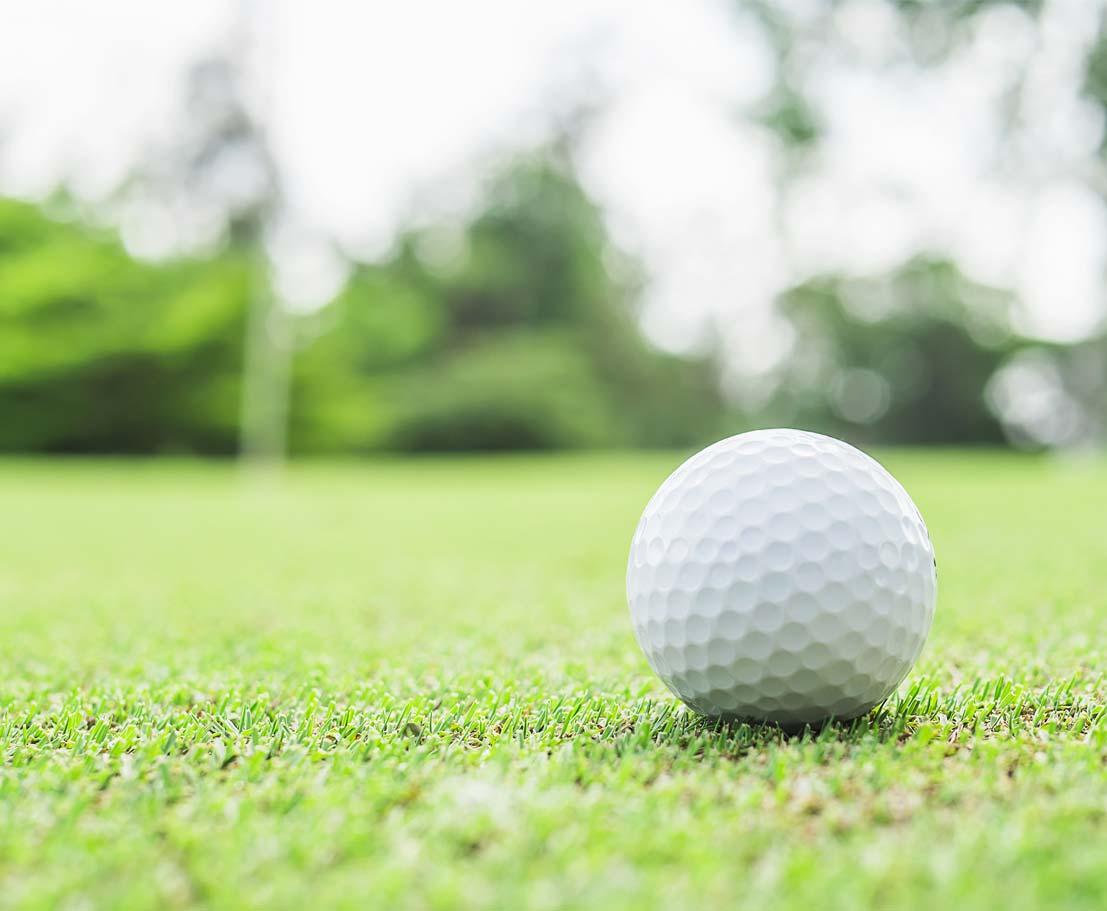 04-golf